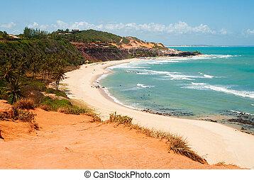 Beautiful beach with palm trees at Praia do Amor Brazil -...