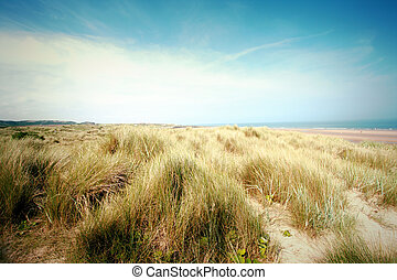 Beautiful beach with sand dunes and blue sky in UK