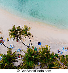 Beautiful beach with white sand palm trees and clear blue sea. People sunbathe and swim