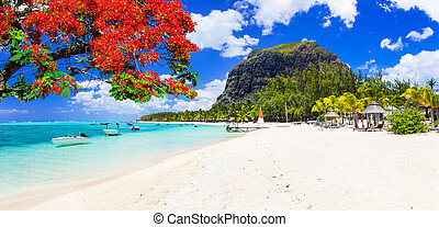 Beautiful beaches of sunny Mauritius island. Tropical ...