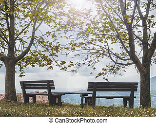 Beautiful bench at the countryside.