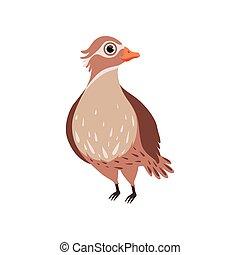 Beautiful bird vector Illustration on a white background