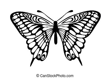 black and white butterfly isolated - Beautiful black and ...