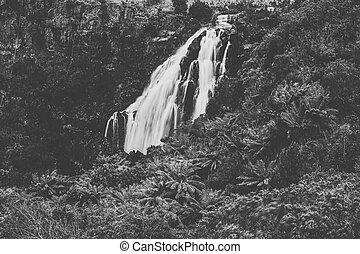 Beautiful Black and White of Waratah Falls in Waratah,...