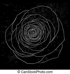 beautiful black and white rose outline with gray spots on a black background.
