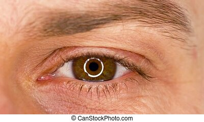 Beautiful blinking male eye close-up - Beautiful male eye ...