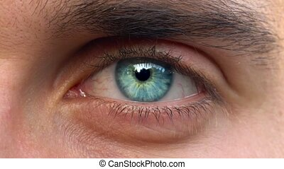 Beautiful blinking male eye close-up - Closeup of blue man's...