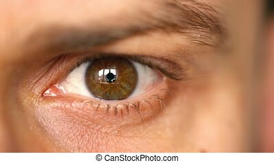 Beautiful blinking male eye close-up