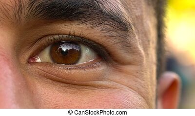 Beautiful blinking male eye close-up - Closeup of man's eye ...