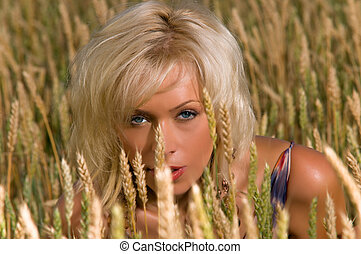 blonde sitting on a field of wheat