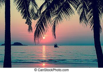 Beautiful bloody sunset on a tropic
