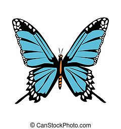 beautiful blue butterfly flying isolated icon