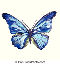 beautiful blue butterfly, watercolor, isolated on a white background