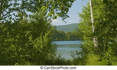 Beautiful blue clear water on the shore of the lake. Forest...