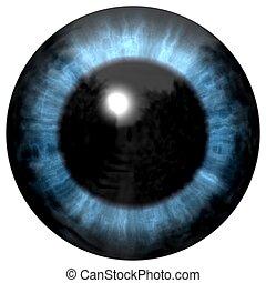 Beautiful blue eyes with bright light reflection. Fashionable blue eye