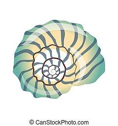 Beautiful blue seashell, an empty shell of a sea mollusk....
