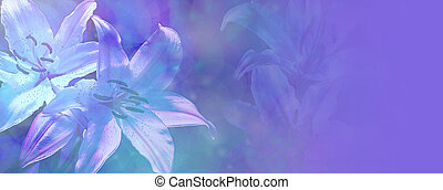 Banner with light blue bokeh effect and transparent white lillies