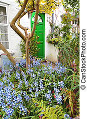 Beautiful bluebells garden in front of the house