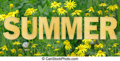 """Beautiful blurred background with yellow wildflowers. The inscription """"Summer""""."""