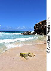 Beautiful Boca Keto Beach in Sunny Aruba