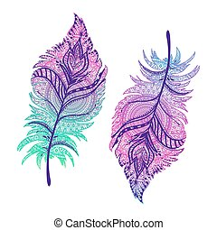 beautiful Boho feathers. - beautiful vector illustration of...