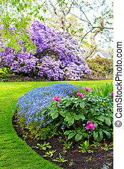 Beautiful, botanic garden in Spring. Beautiful Corydalis Flexuosa in full bloom, close up