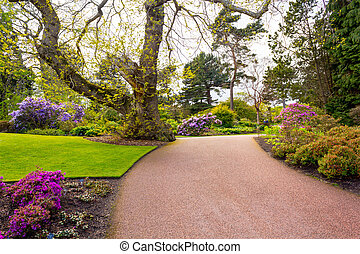 Beautiful, botanic garden in Spring.