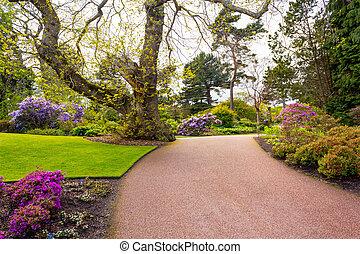 Beautiful, botanic garden in Spring.