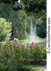 Beautiful botanical garden