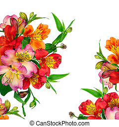 Beautiful bouquet of colorful flowers in vase (Alstroemeria)