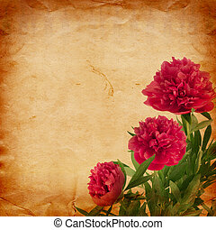 Beautiful bouquet of pink peonies on abstract vintage paper...