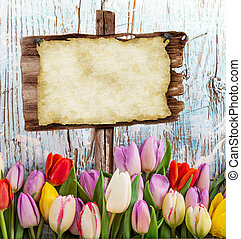 Beautiful bouquet of tulips with blank paper. - Beautiful...