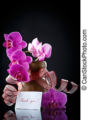 beautiful branch Phalaenopsis with gratitude on a black...