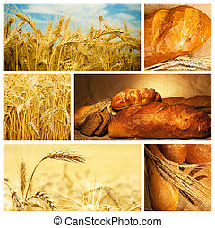 Beautiful bread and wheat collage