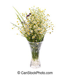 bouquet of wild flowers chamomile