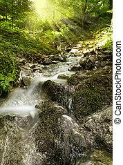 Beautiful brook with sun - Beautiful alpine brook in the ...