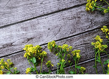 Beautiful brown background with yellow wildflowers