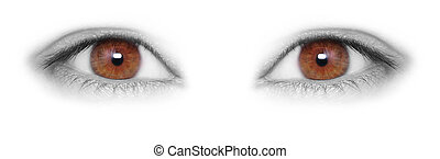 Beautiful brown Eyes isolated on white background