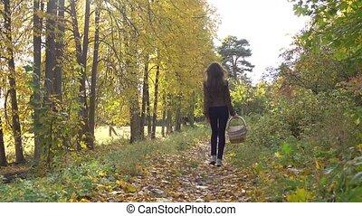 Beautiful brunette girl walking in autumn forest holding a picnic basket. 4K steadicam video