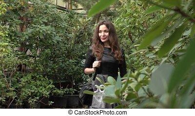 Beautiful brunette girl walking through tropical plants in...