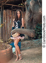 Beautiful brunette lady feeding an elephant