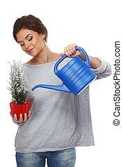 Beautiful brunette woman watering plant in red pot