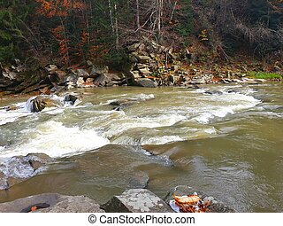 Beautiful bubbling, fast river Prut among the rocky coast in the city of Yaremche in the fall. Western Ukraine, Carpathians, October 27,2018.