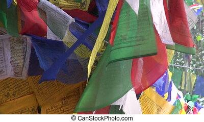 Buddhist praying flags on old tree - beautiful Buddhist...