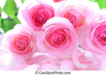 Beautiful bunch of pink roses on rose petals background