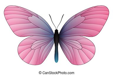 Beautiful butterfly isolated on a white background - Idea...