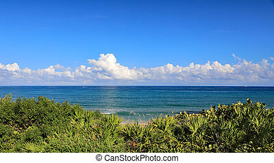 Beautiful calm ocean with cumulus clouds, as seen from Singer Island, Florida, with natural vegetation on the sand dune.
