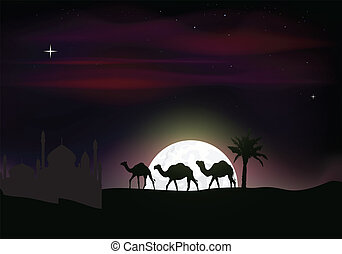camel trip silhouettes
