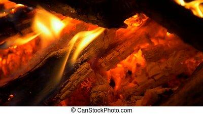 Beautiful Campfire, Bonfire Closeup