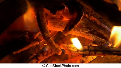 Beautiful Campfire, Bonfire Closeup